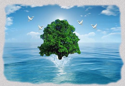 Resultado de imagem para tree in the sea